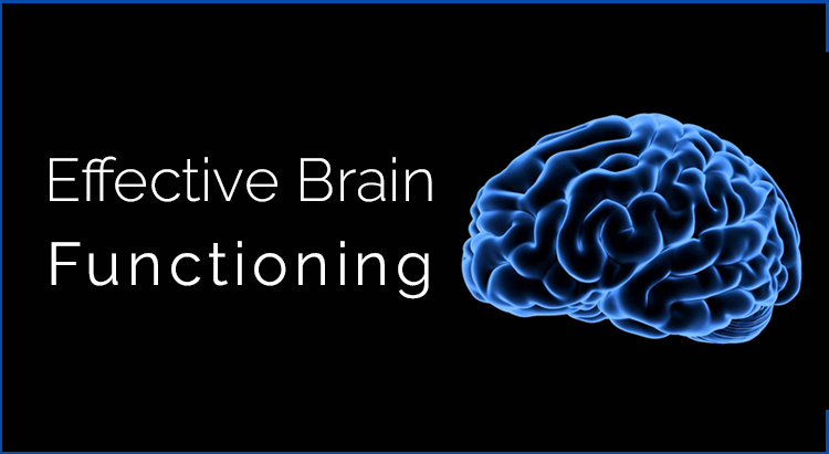 Moringa Benefits for Brain