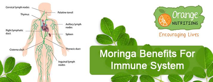 Moringa for Immune System