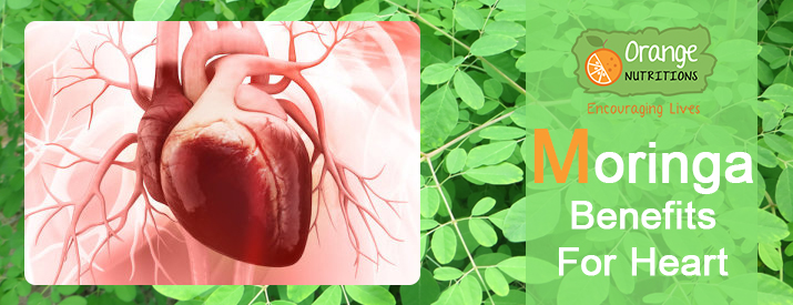 moringa benefits for heart