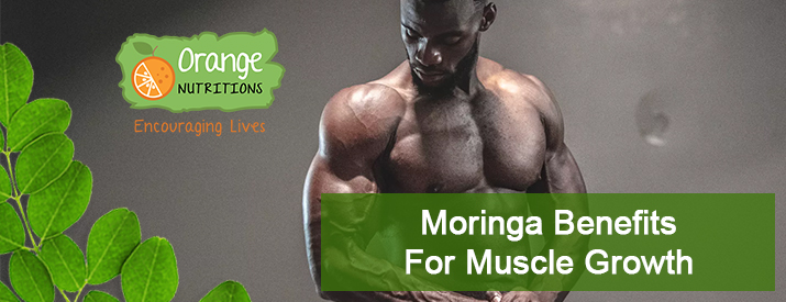 Moringa Benefits for Muscle Growth